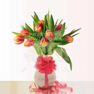07-tulipan