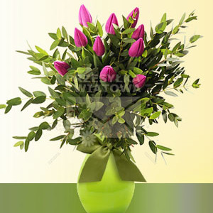 17-fioletowe-tulipany